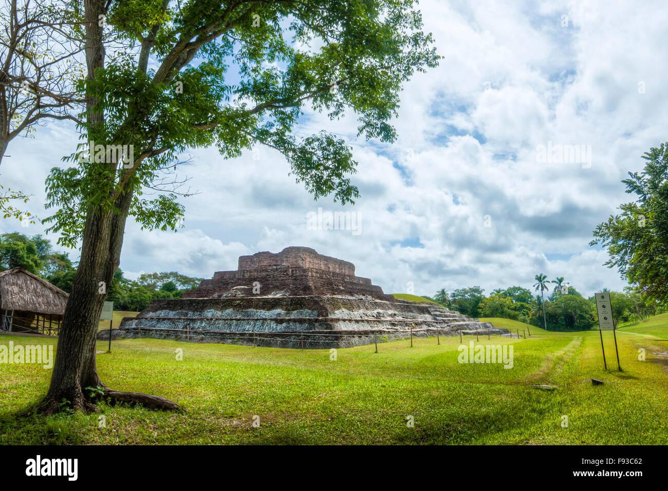 Trees and pyramid at the Mayan ruins of Comalcalco, Tabasco, Mexico. - Stock Image