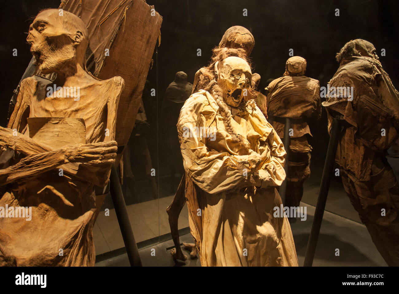 Macabre mummies in Guanajuato, Mexico's famous Mummy Museum. - Stock Image
