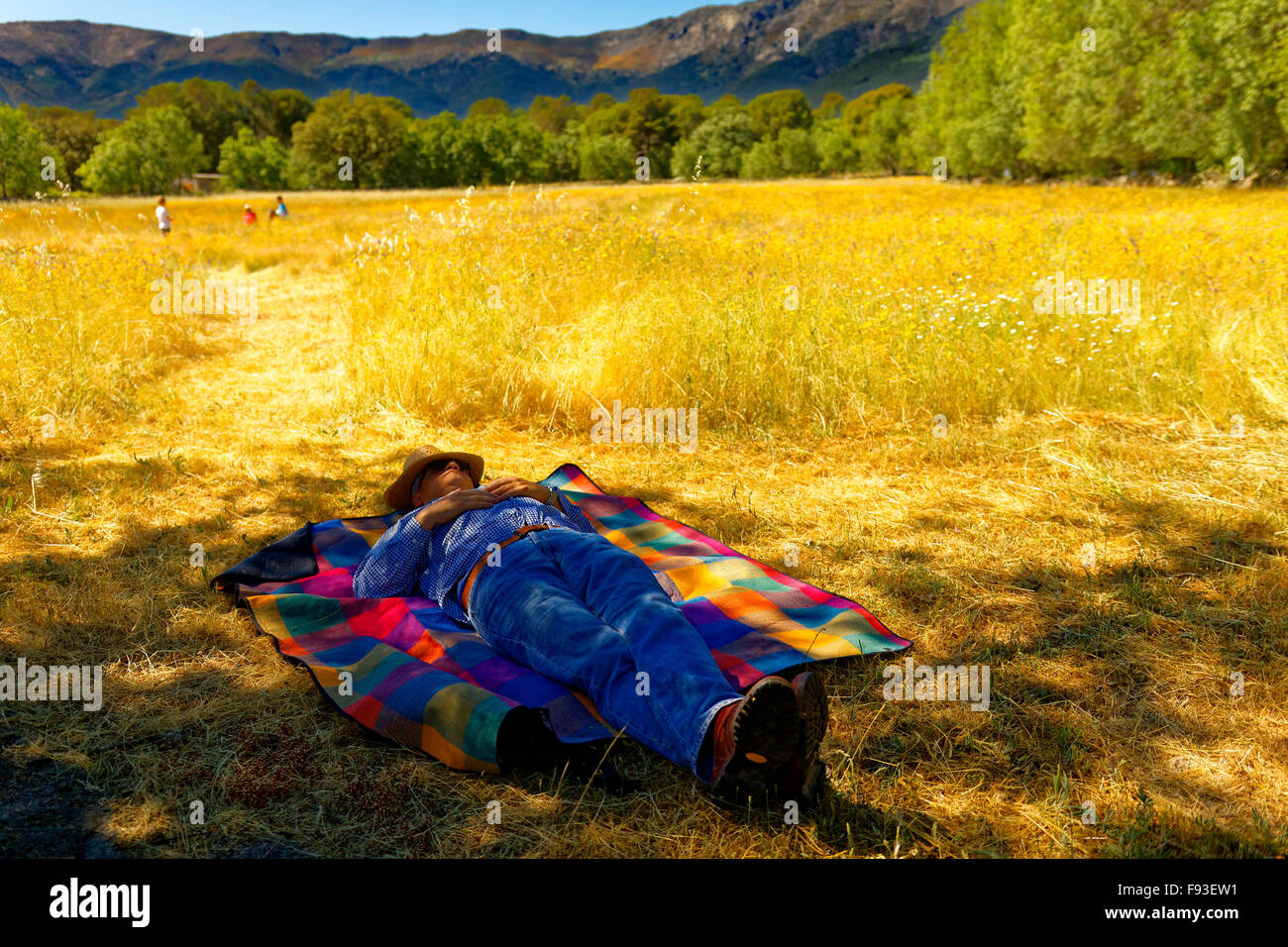 a peasant taking siesta in a yellow field, while others are working - Stock Image