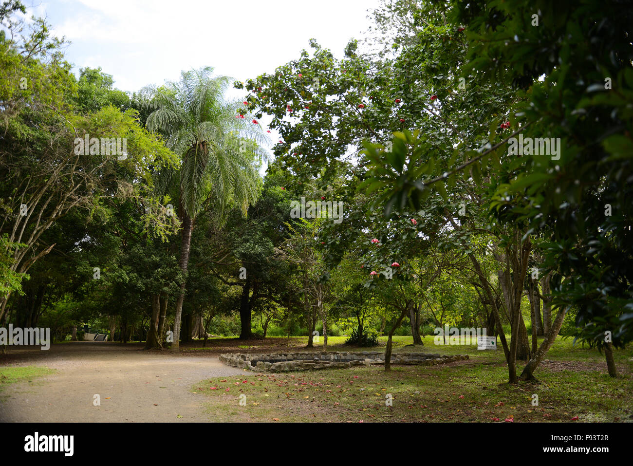 Tibes Indigenous Ceremonial Center. Ponce, Puerto Rico. Caribbean Island. USA territory - Stock Image