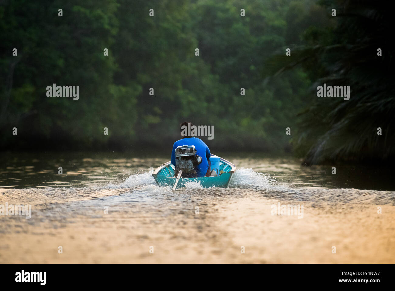 Man sails on boat crossing a river in wetland area of Borneo. - Stock Image