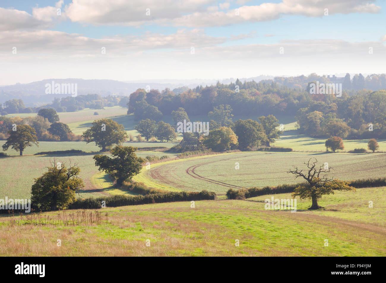 View over Ragley Estate, Warwickshire, England. Stock Photo