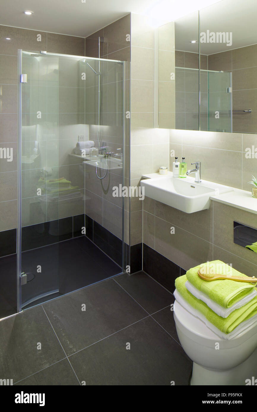 One Church Square, London, UK. Modern styled bathroom with shower ...