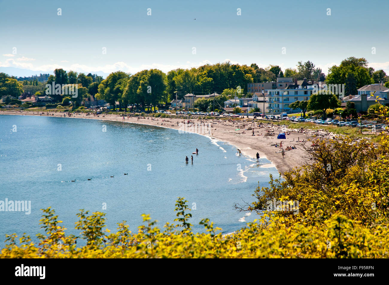 Willows Beach, in Oak Bay Victoria, BC, is a wide sandy stretch of beach that attracts people to walk and relax. - Stock Image