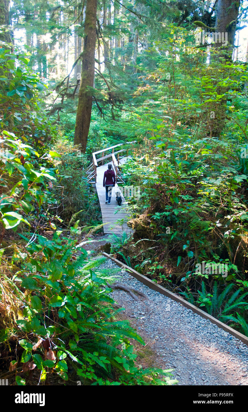 Sandcut beach trail, part of the Juan de Fuca trail on the West Coast of Vancouver Island, is a sandy protected Stock Photo
