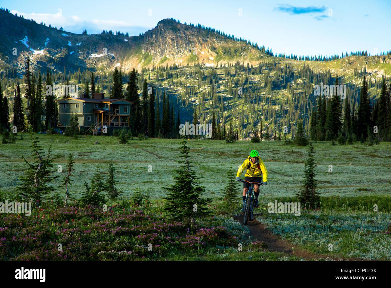 Mountain Biking, Monashee Mountains, Sol Mountain Lodge, British Columbia, Canada, - Stock Image