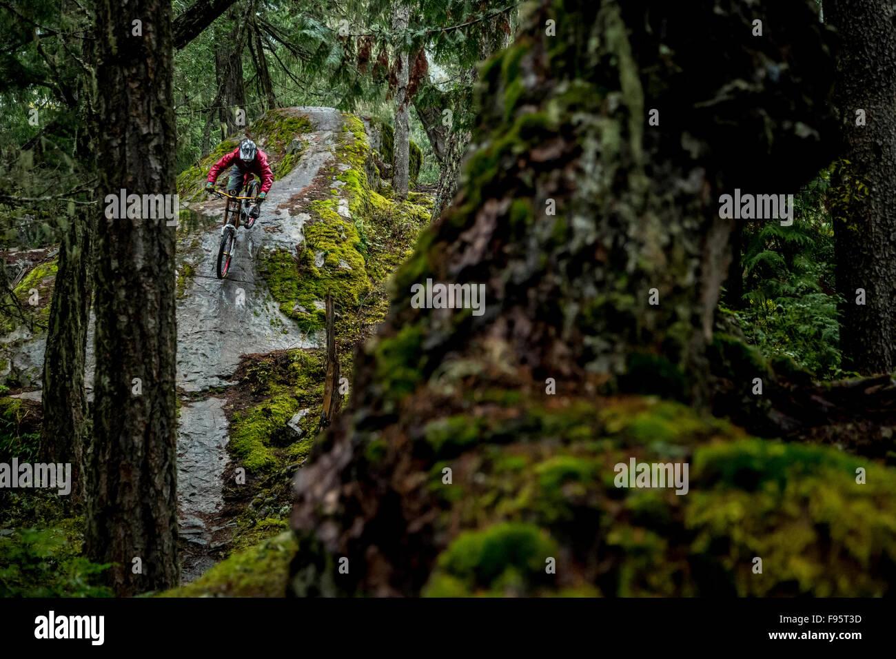 Mountain Biking, Lower yer Saddle, Whistler, British Columbia, Canada - Stock Image