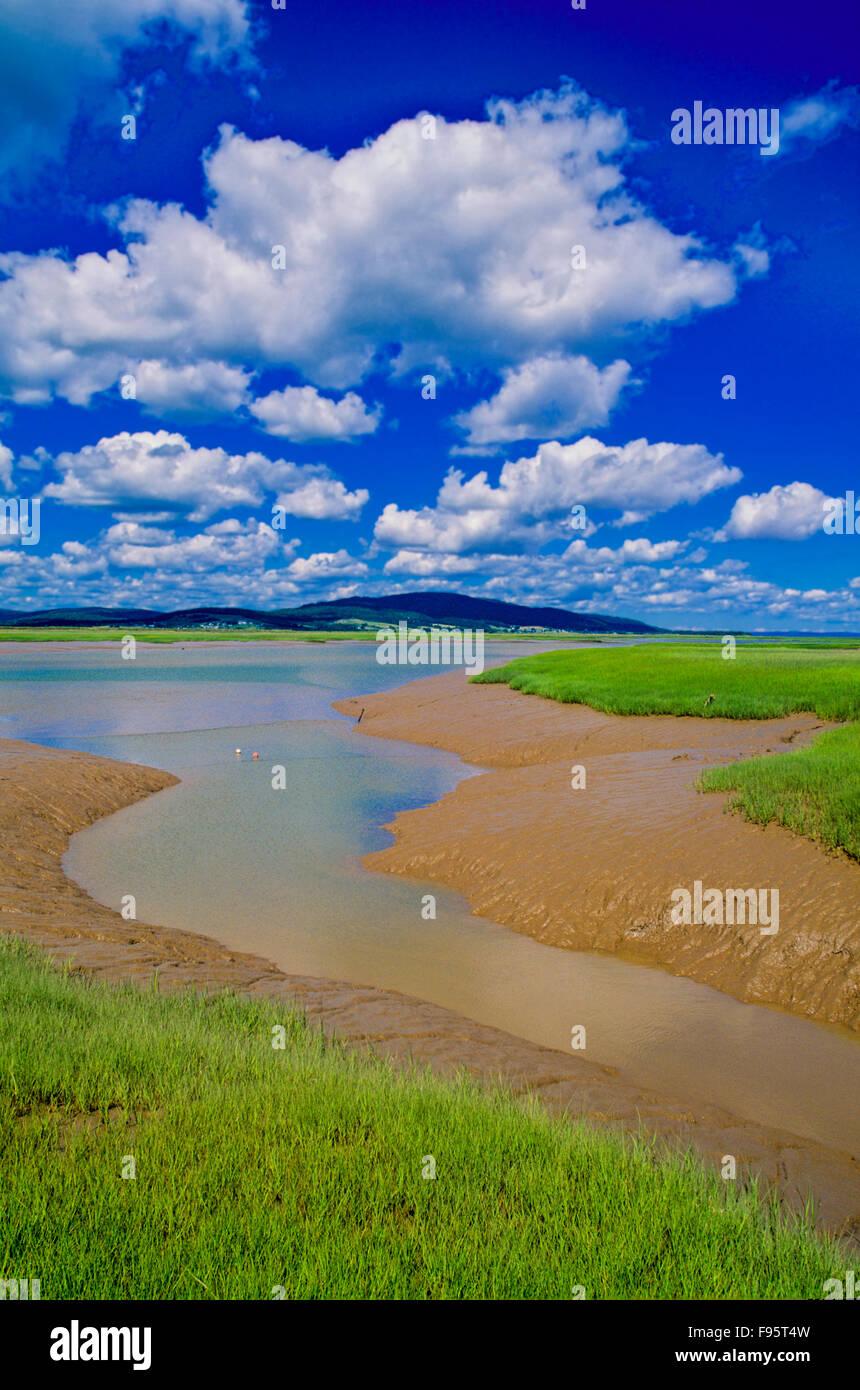 Shepody National Wildlife Area, Bay of Fundy, New Brunswick, Canada - Stock Image