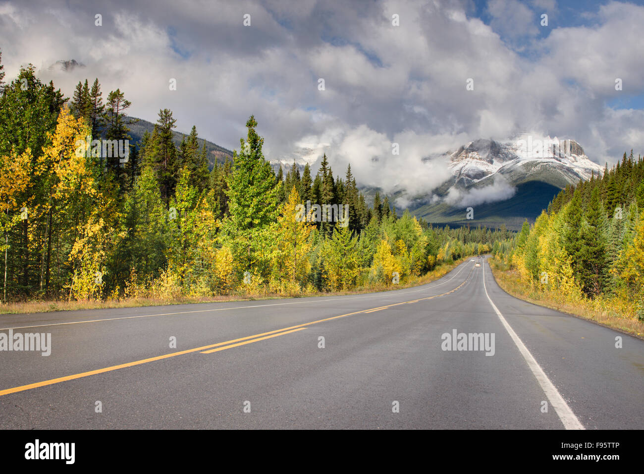 Icefields Parkway (Highway 93) near Rampart Creek, Banff National Park, Alberta, Canada - Stock Image