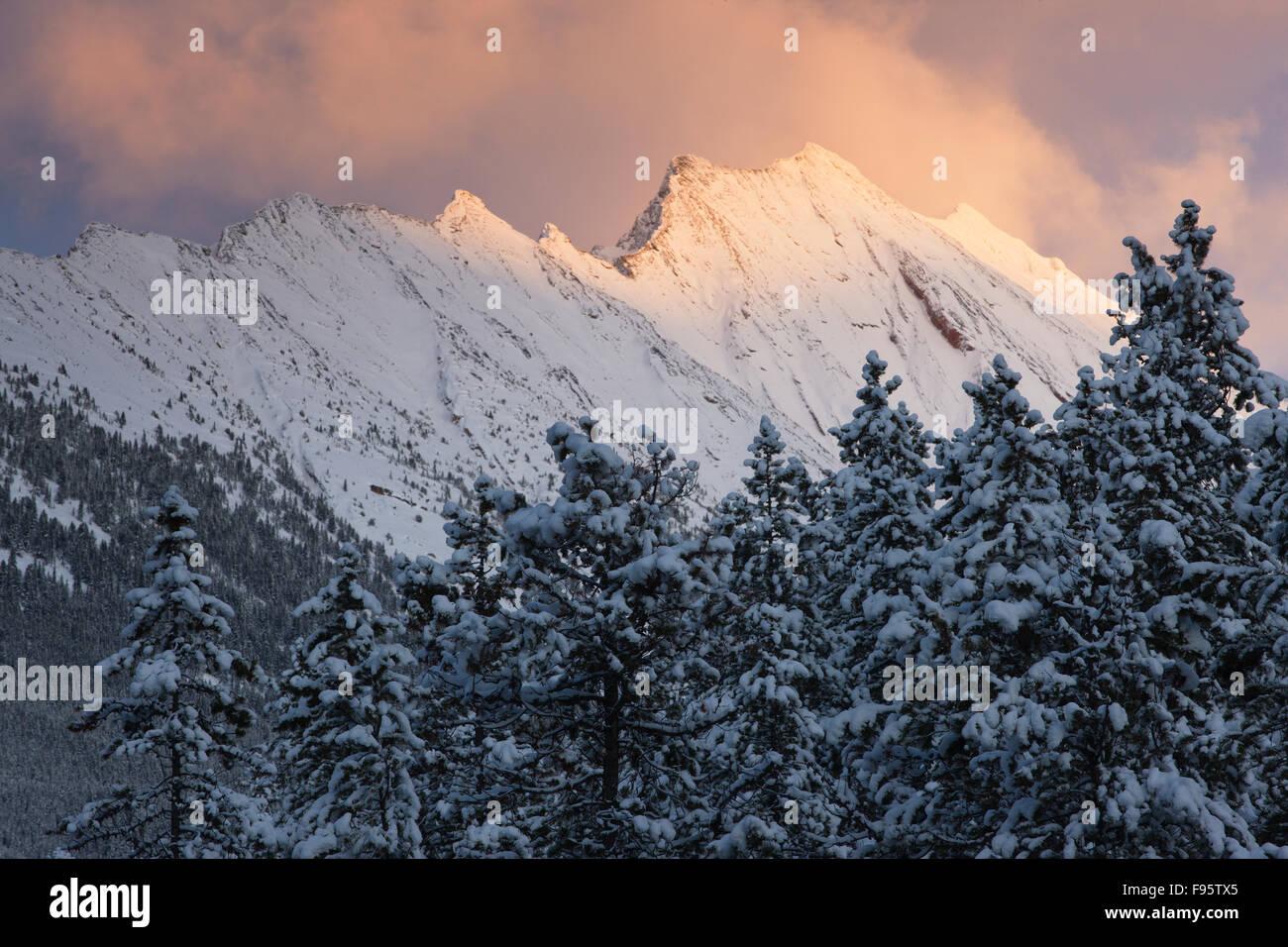 The Endless Chain Ridge at dusk, Jasper National Park, Alberta, Canada - Stock Image