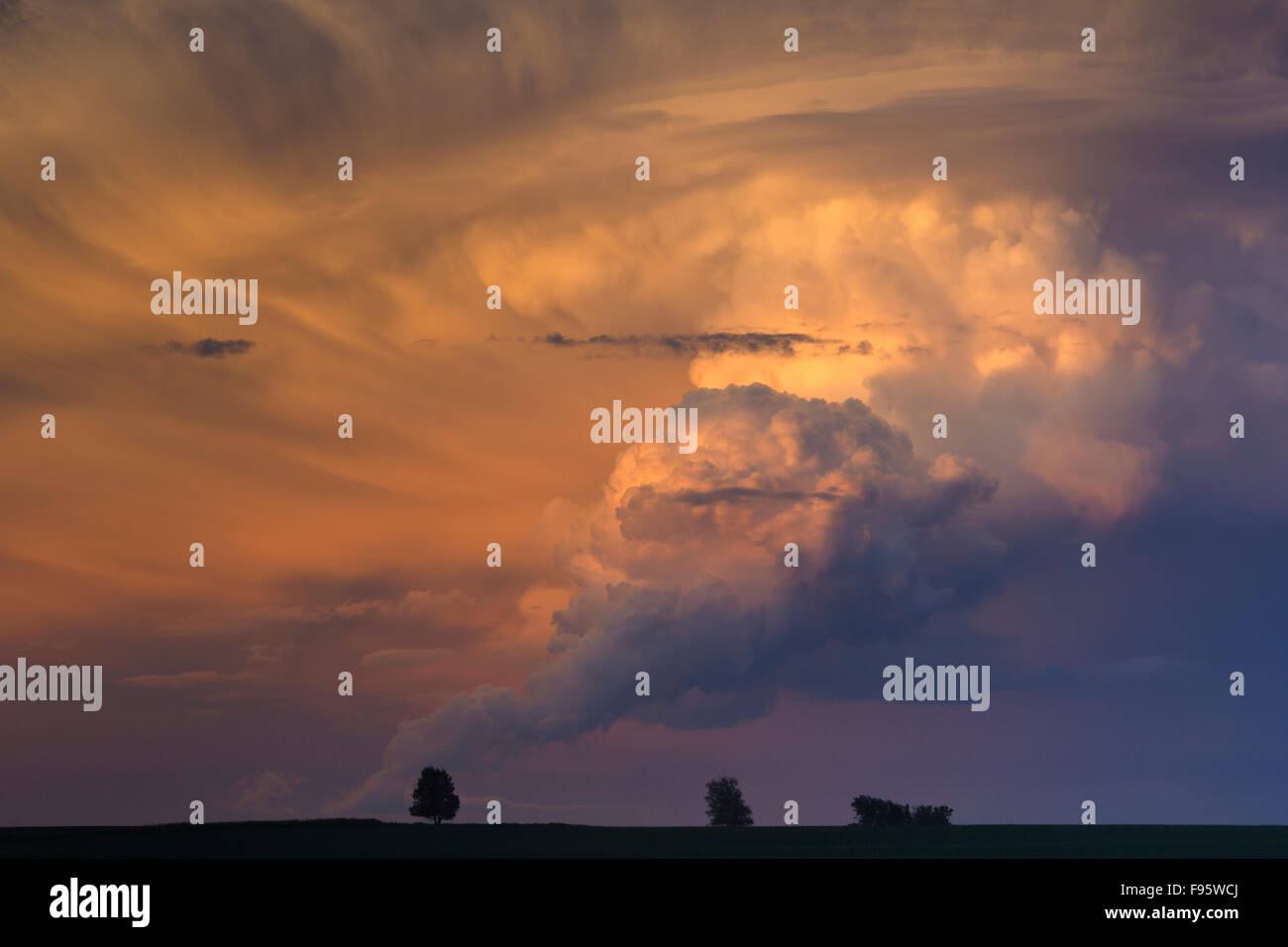 Storm cloud at sunset near Airdrie, Alberta, Canada - Stock Image
