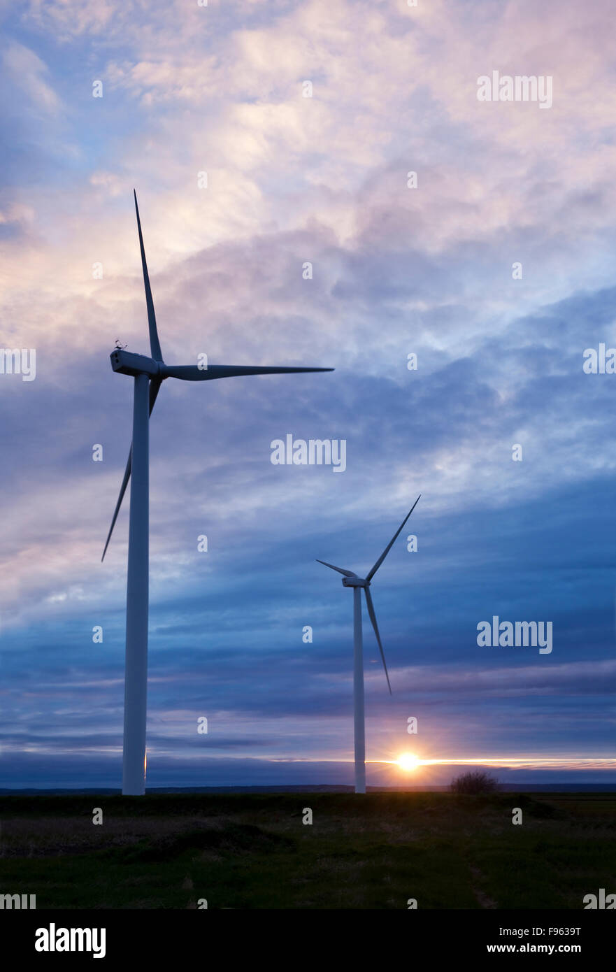 Two wind turbines silhouetted against the setting sun. The turbines are among 15 at the Amherst Wind Farm located Stock Photo