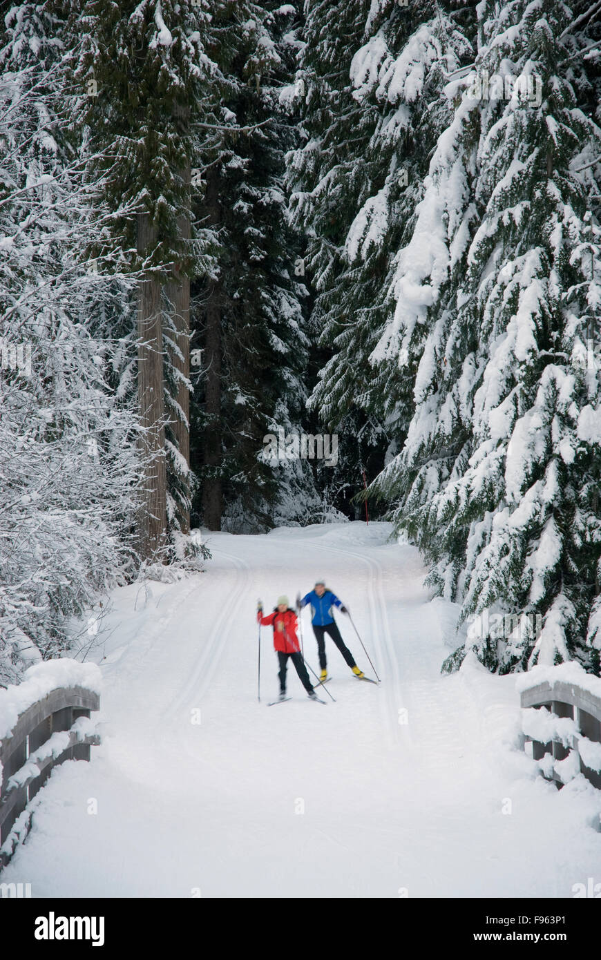 Cross country skiers Maria Lundgren and Akiko Clarke skate the trails at Lost Lake park in Whistler, BC - Stock Image