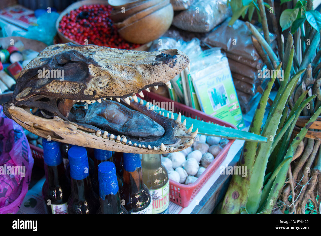 Market scenes, Iquitos, the largest city in the Peruvian rainforest and the fifthlargest city of Peru - Stock Image