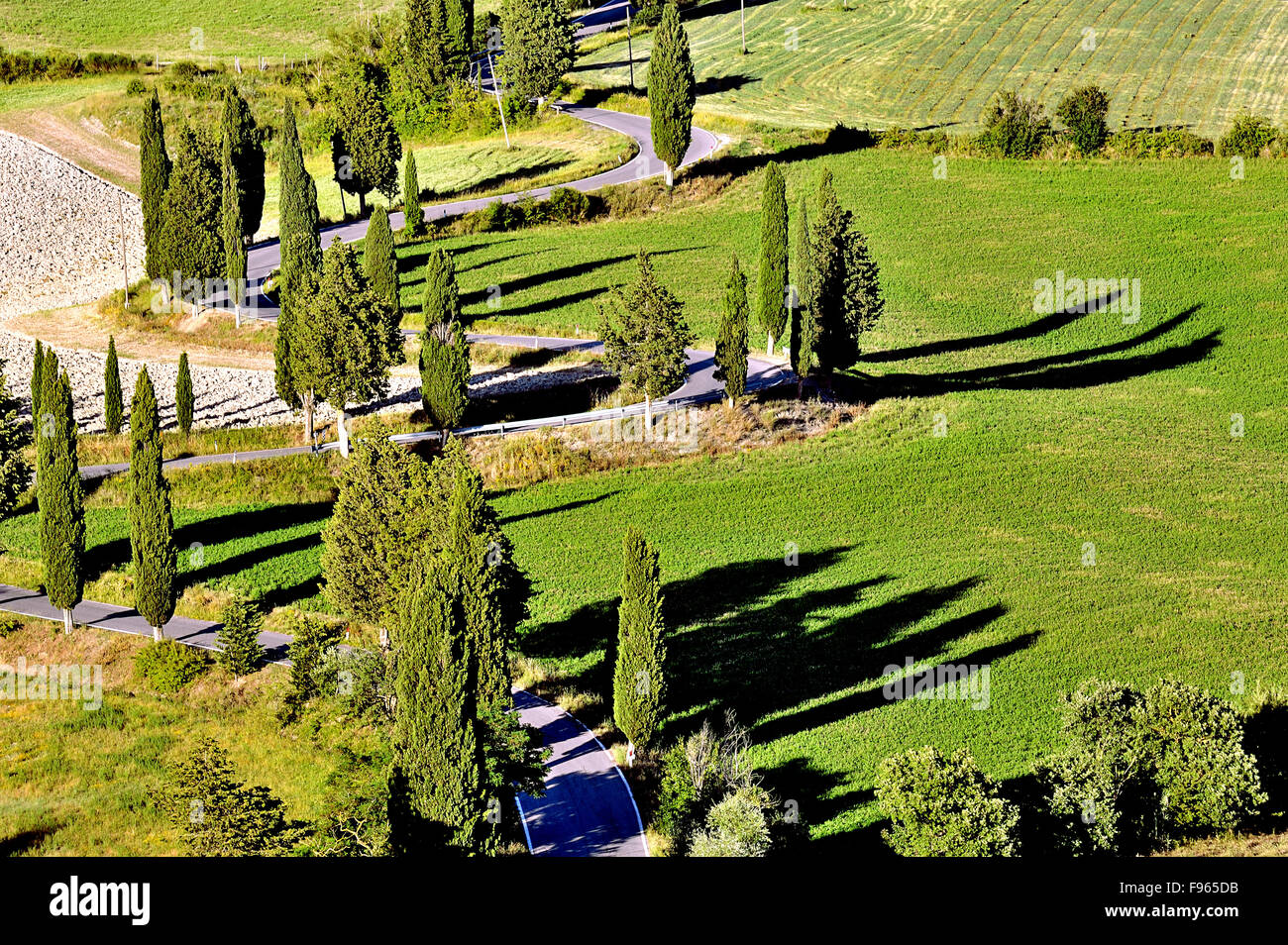 Curvy picturesque road in Tuscany fringed by cypresses, Tuscany, Italy - Stock Image