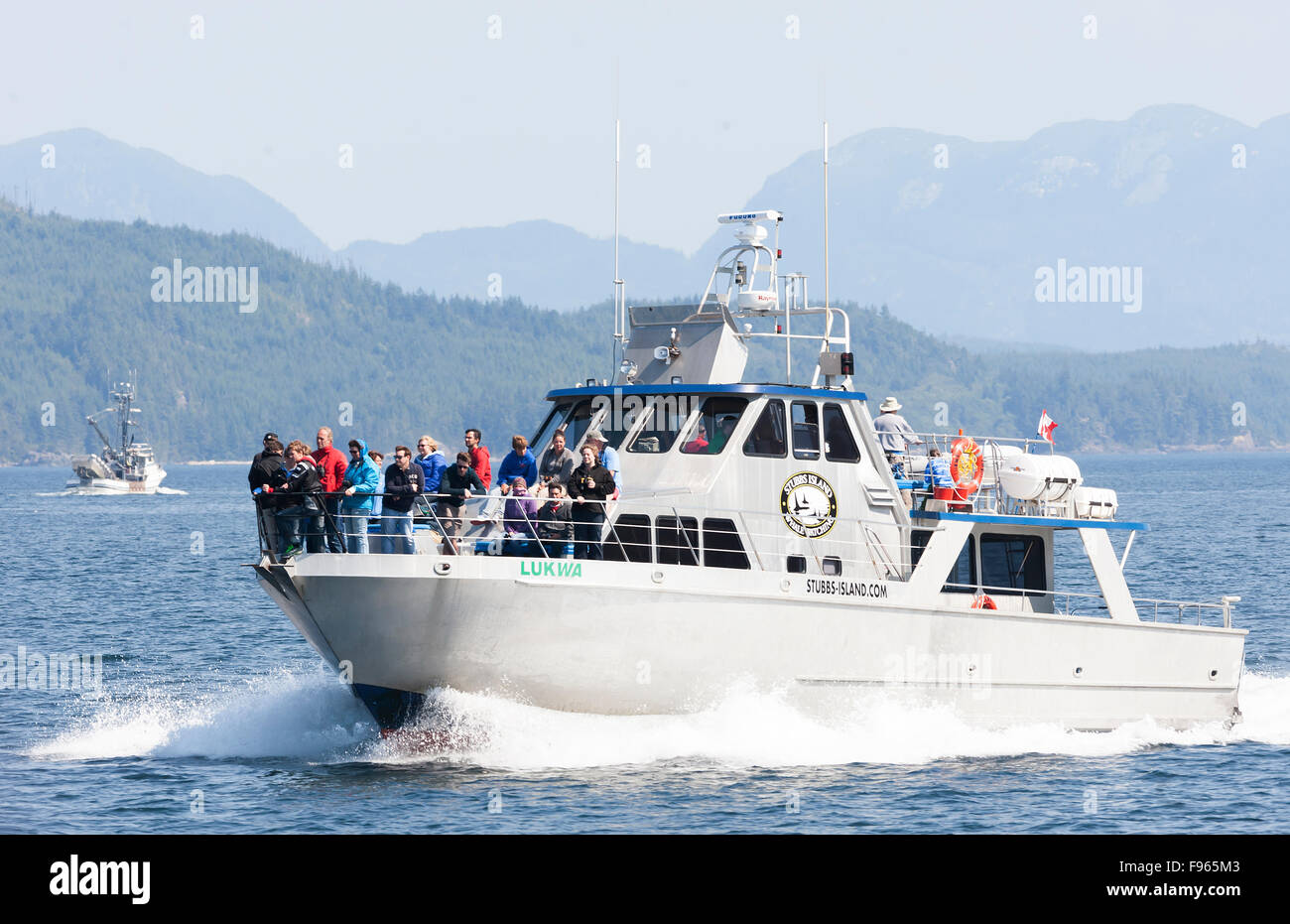 Whale watchers cruising through the waters of Johnstone Strait look for Killer Whales in their natural habitat aboard Stock Photo