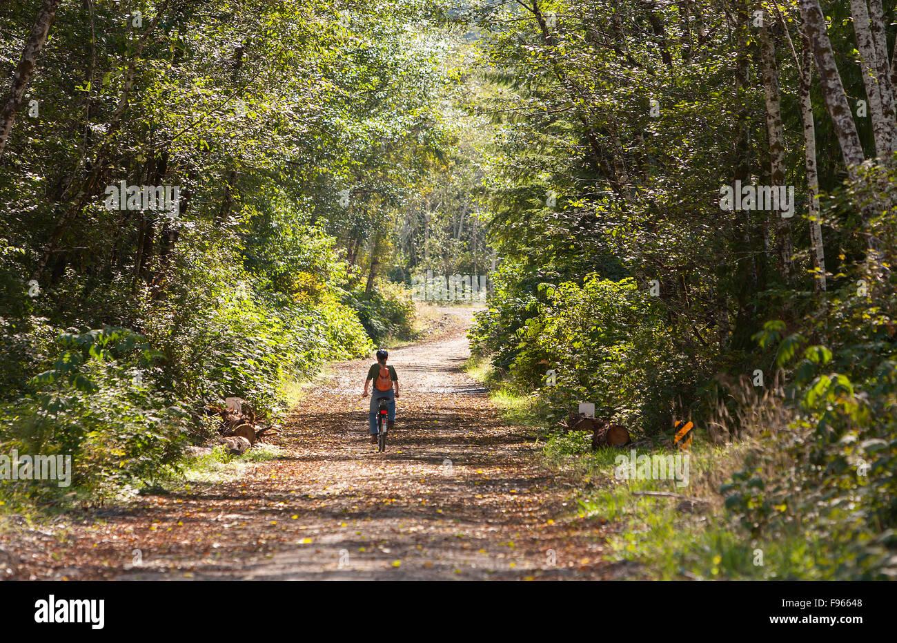 A lone biker rides along a sun dappled loggin road near Coal Harbour. - Stock Image