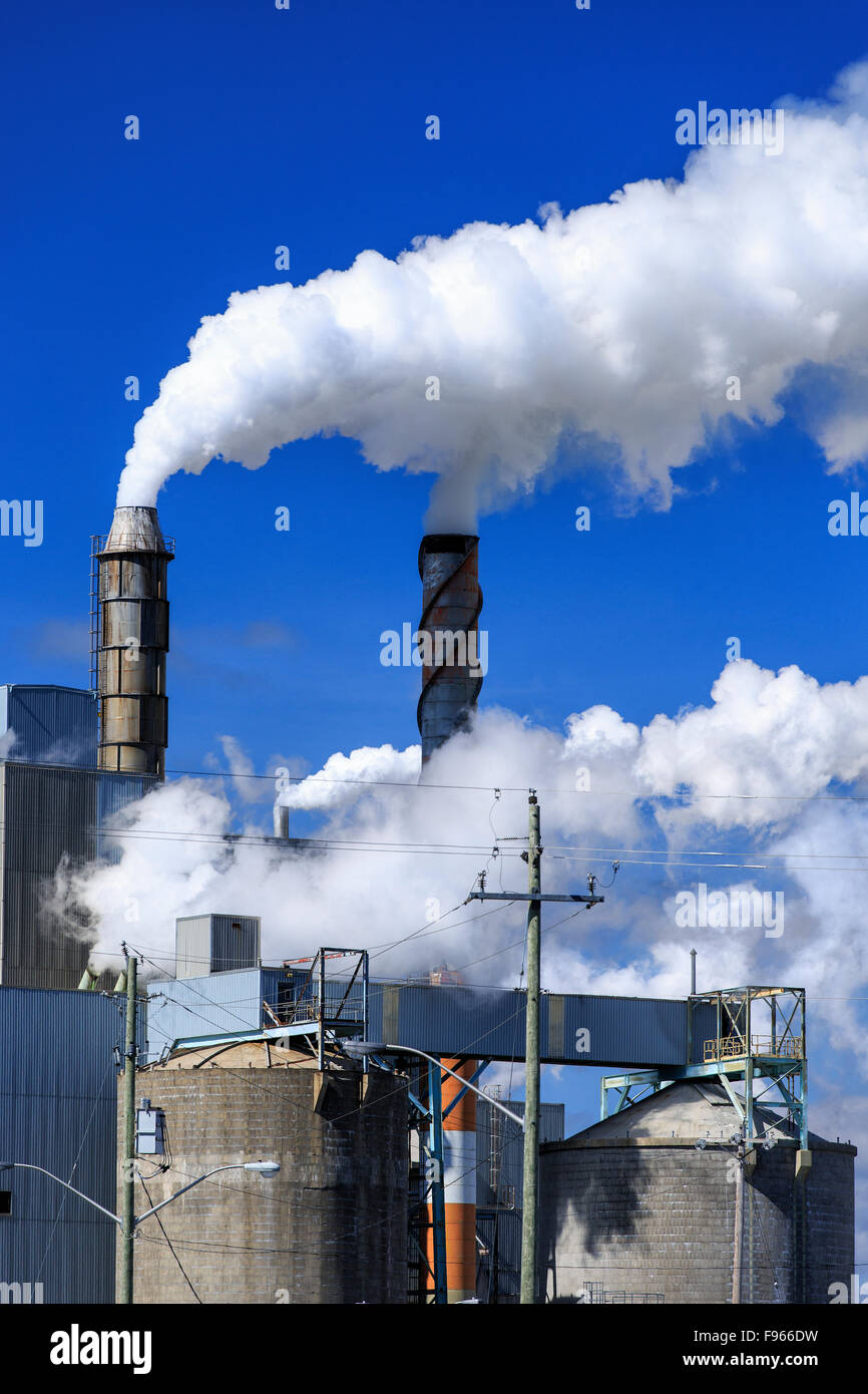 Air pollution from smokestacks at a pulp and paper mill, Terrace Bay, Ontario, Canada - Stock Image