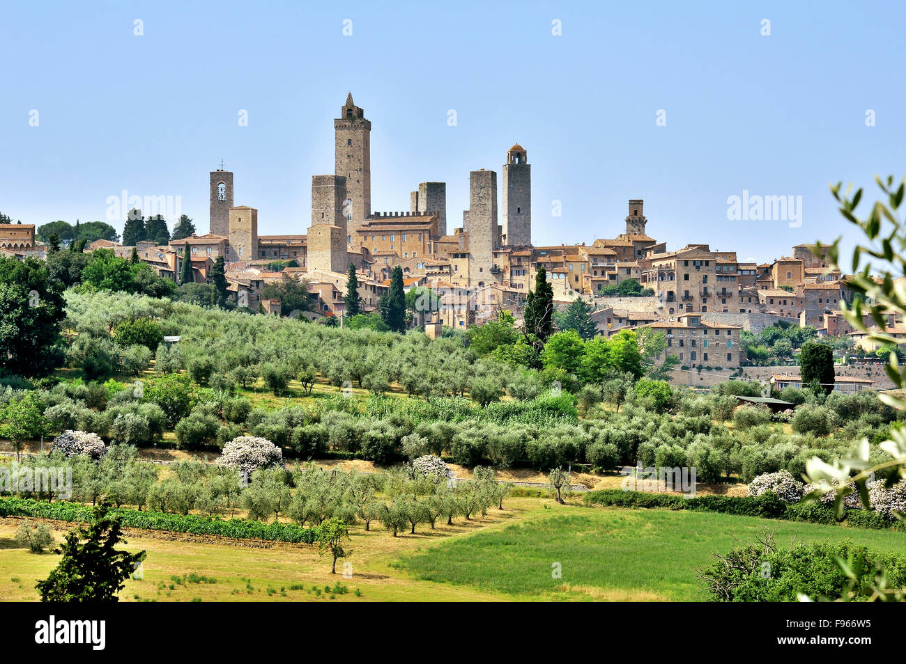 Skyline of San Gimignano, town and tower house of the Middle Ages, Tuscany,  Italy - Stock Image