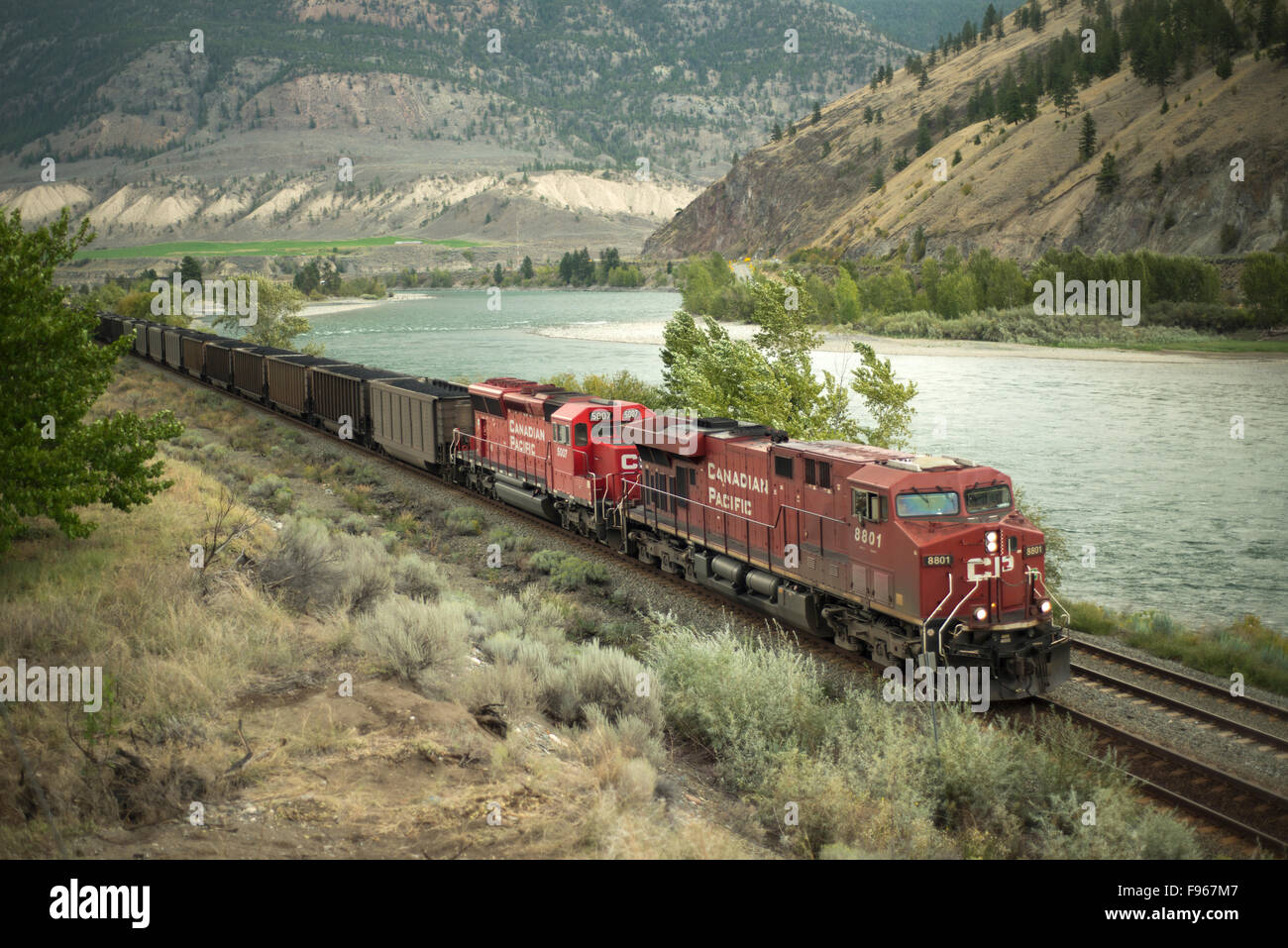 A CP (Canadian Pacific) coal train skirts along the Thompson River, through Spences Bridge, British Columbia, Canada. - Stock Image