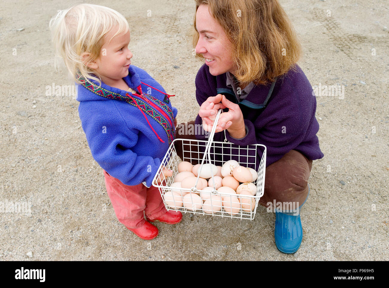 A woman talks with her daughter after harvesting organic chicken eggs together. - Stock Image