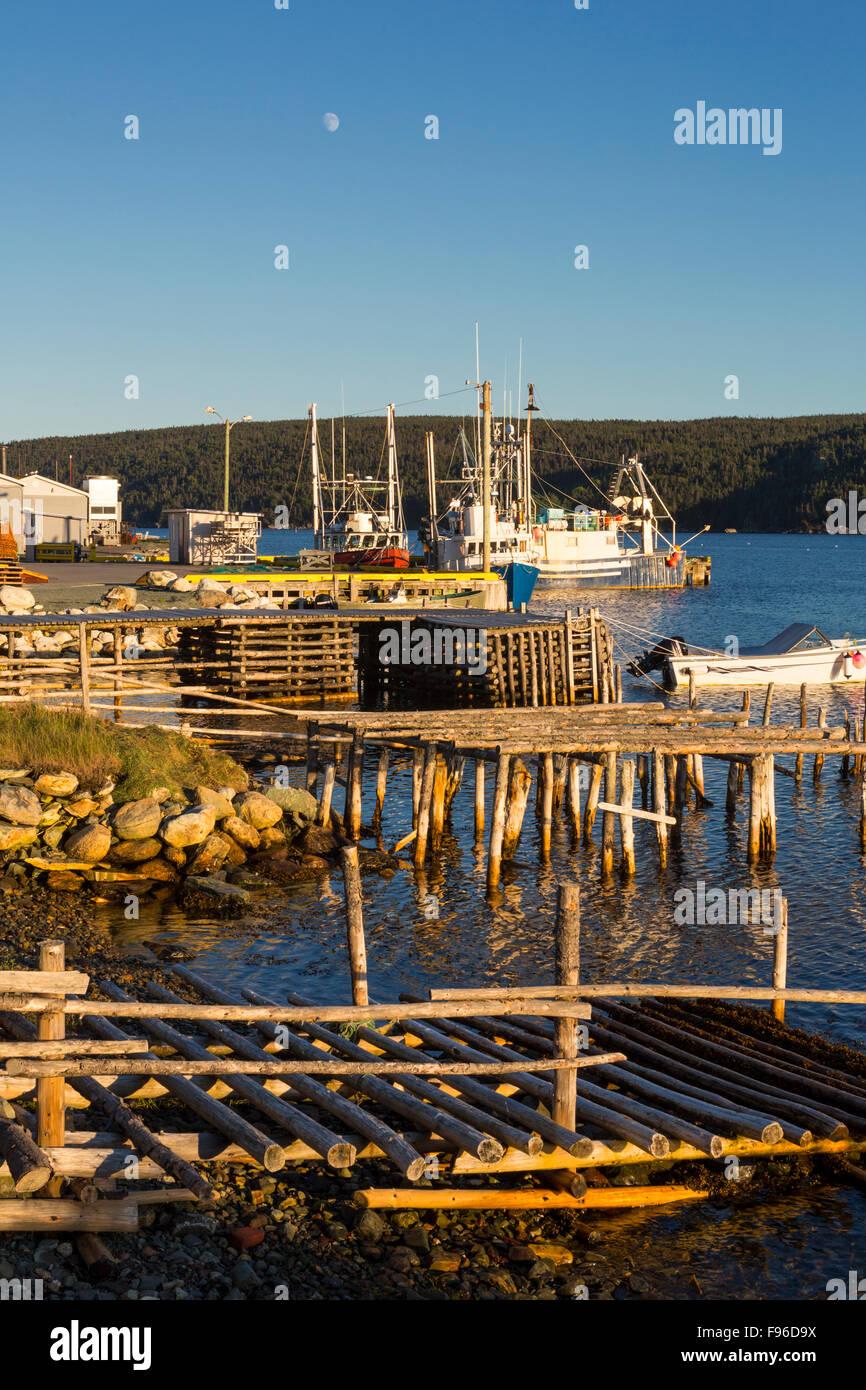 Fishing boats tied up at wharf, Cape Broyle, Newfoundland, Canada - Stock Image