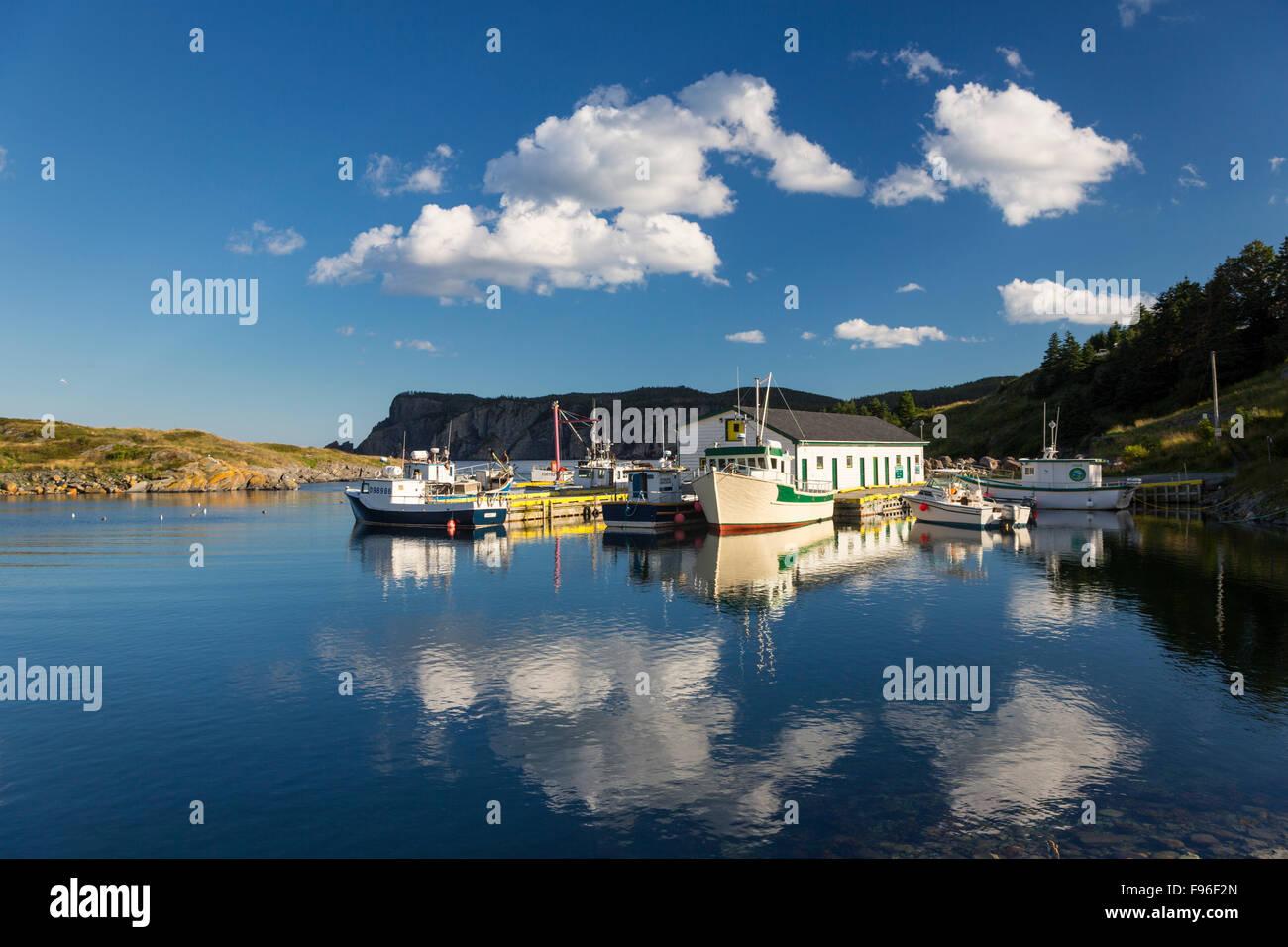Fishing boats tied up at wharf, Brigus South, Newfoundland, Canada - Stock Image