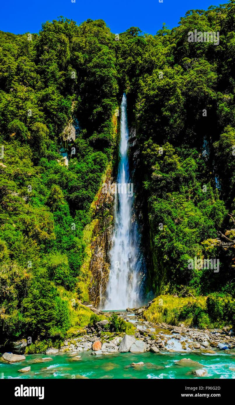 Westland South Island, New Zealand, Thunder Creek Falls - Stock Image