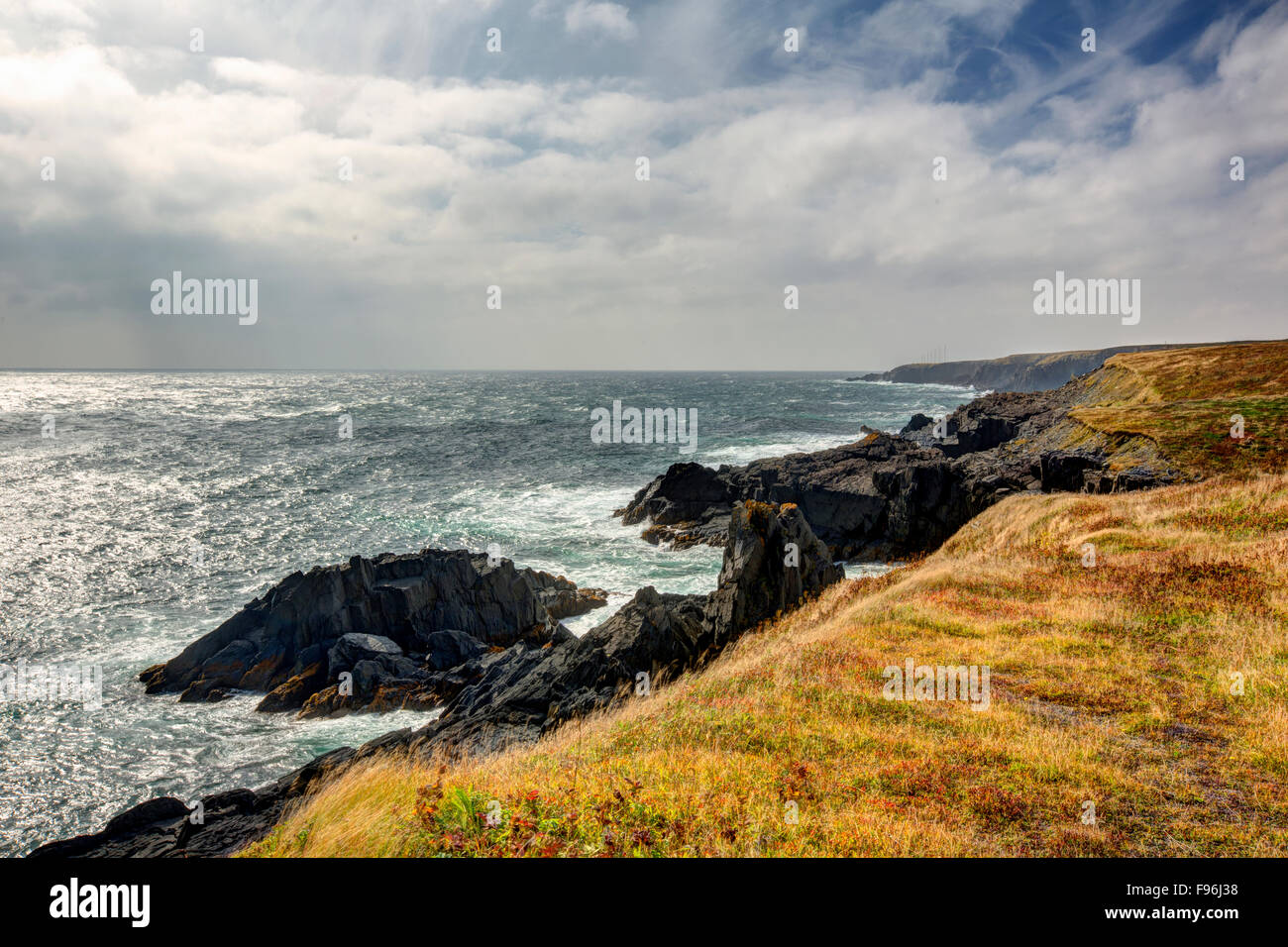 Mistaken Point Ecological Reserve, Newfoundland, Canada - Stock Image