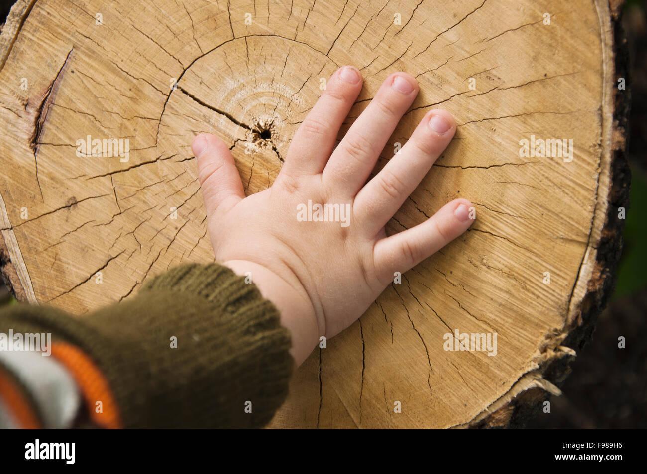 children's hand on stub - Stock Image