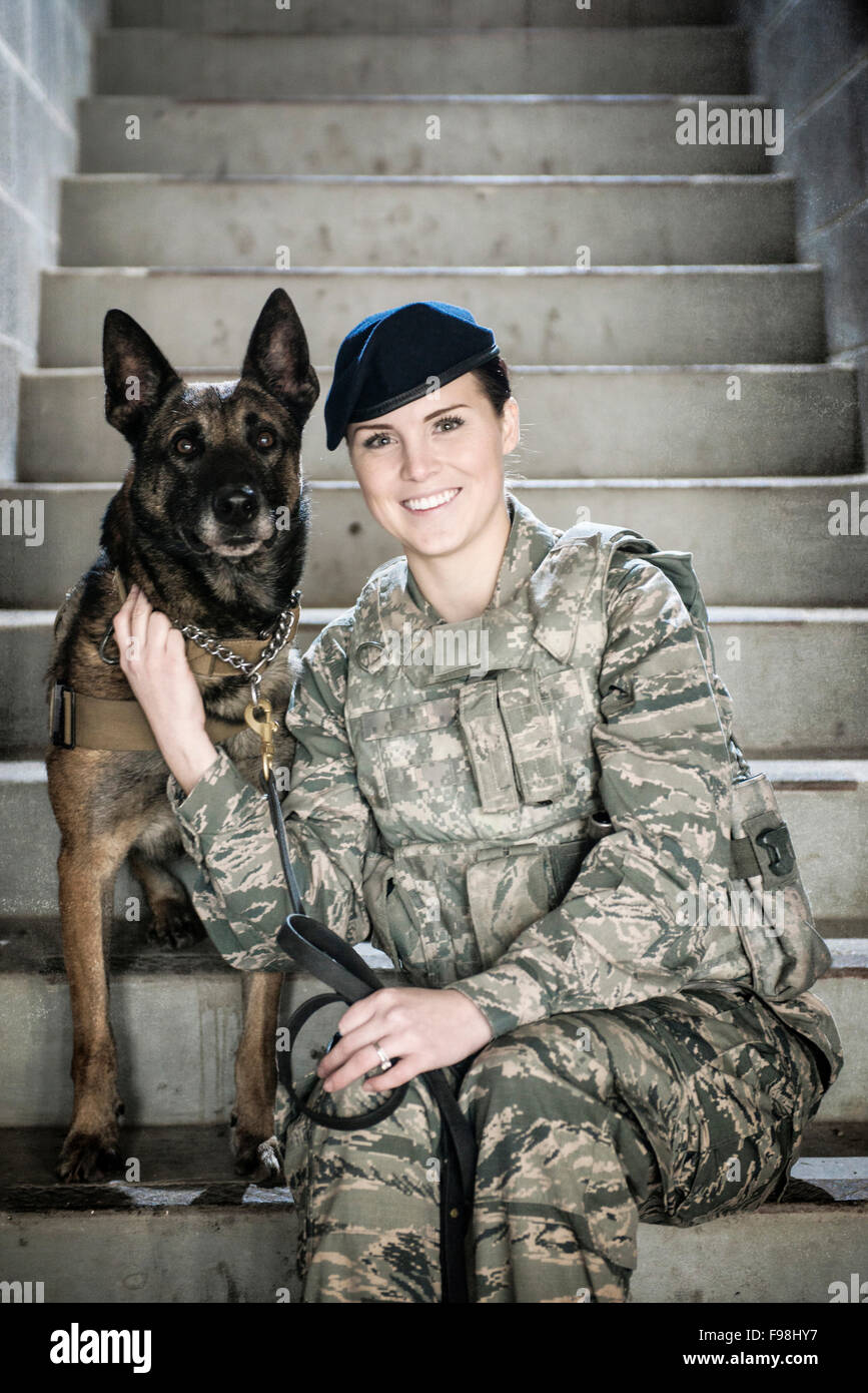 Military Dog Stock Photos Amp Military Dog Stock Images Alamy
