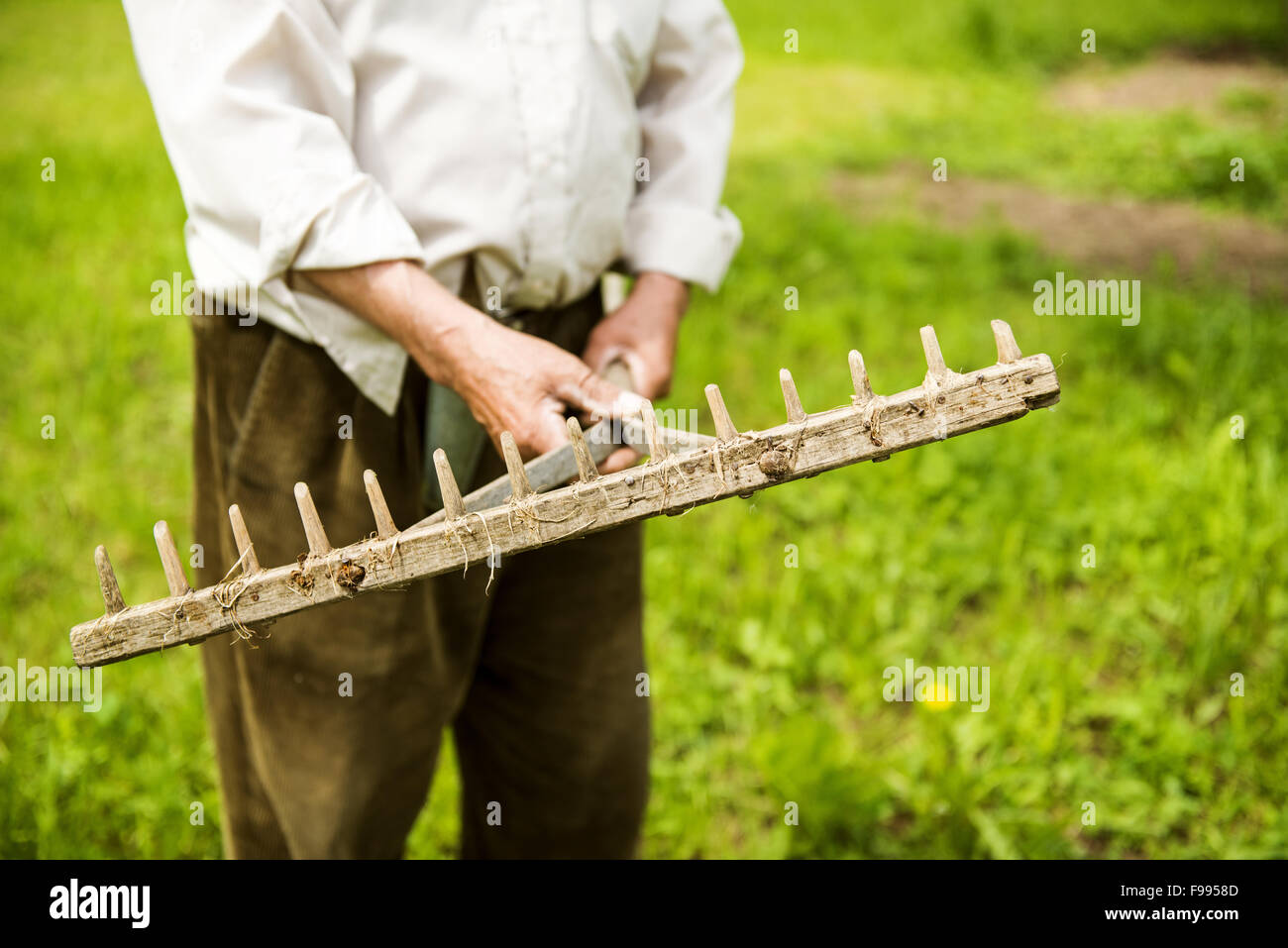 Old farmer with beard working with rake in garden - Stock Image
