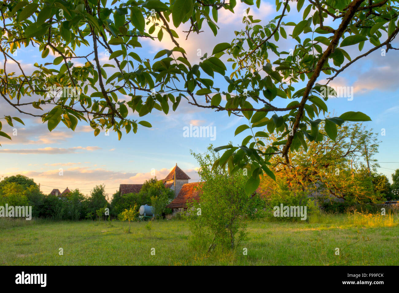 View across an orchard of traditional Quercy farmhouses, in evening light. Causse de Gramat, Massif Central, Lot - Stock Image