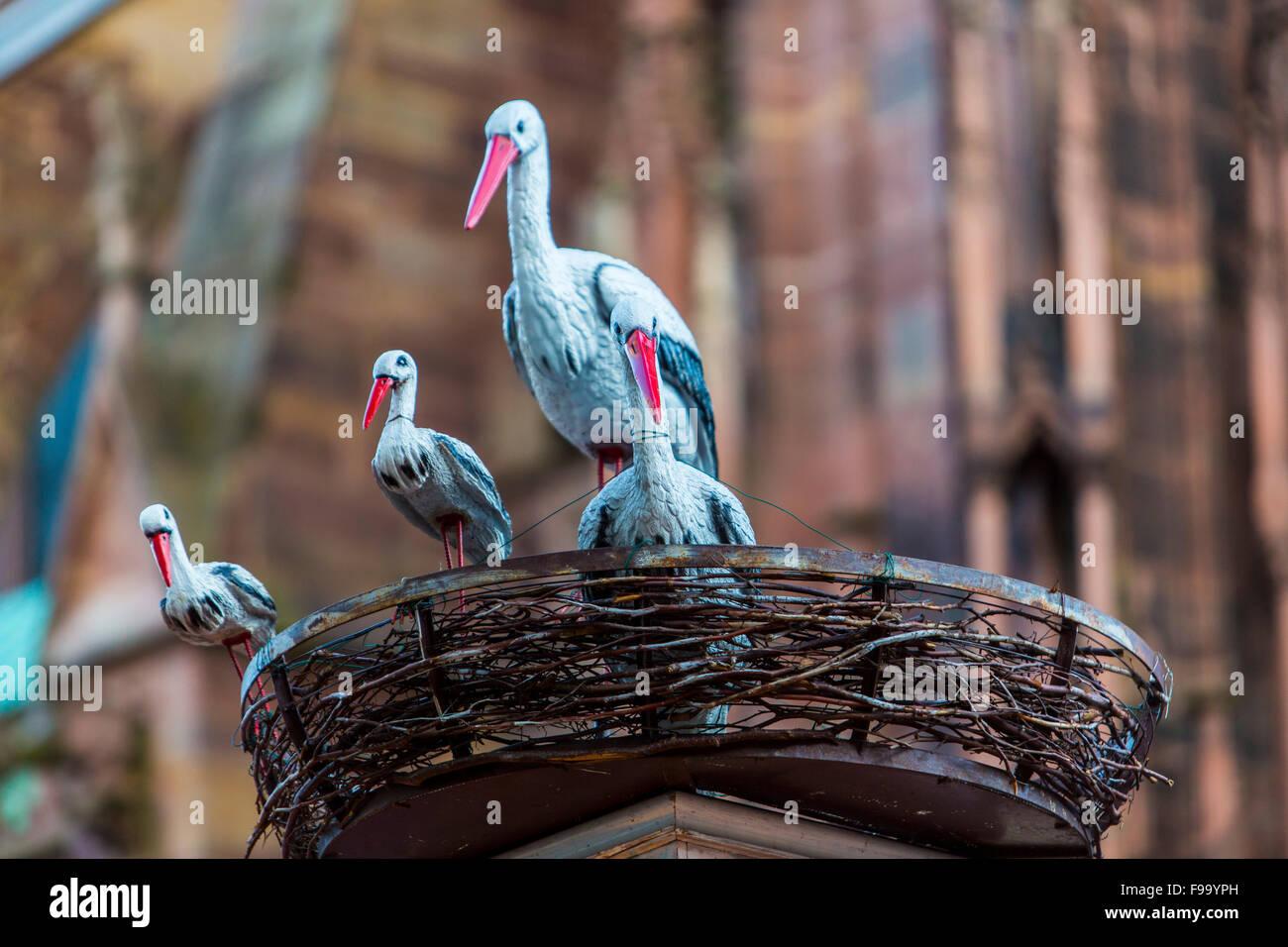 Alsatian storks, emblem, a symbolic figure, Strasbourg, Alsace, France, - Stock Image