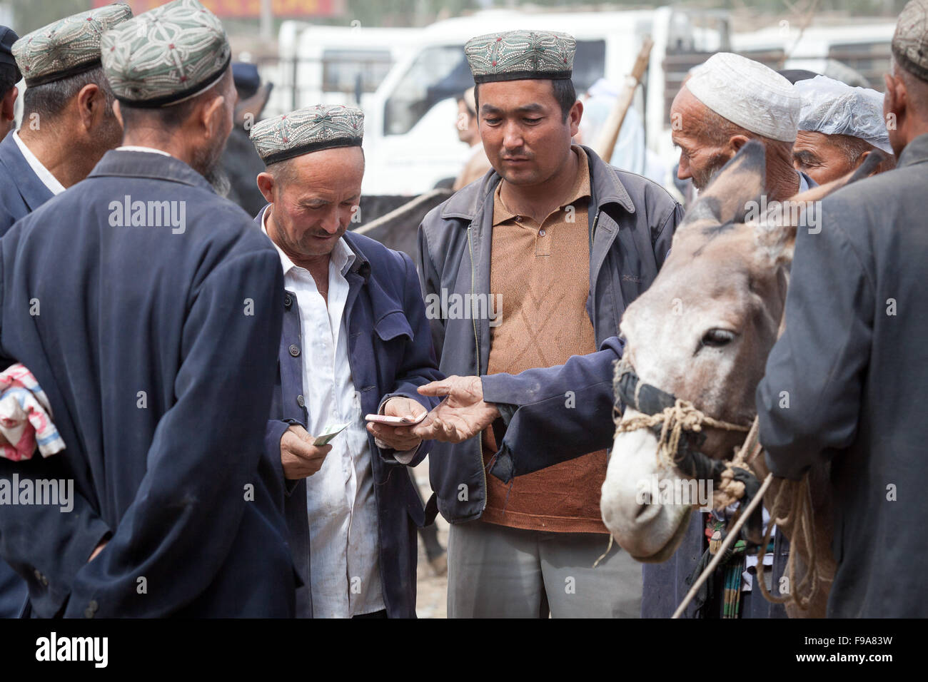 Tenders on the famous animal market in Kashgar. Xinjiang, China. - Stock Image