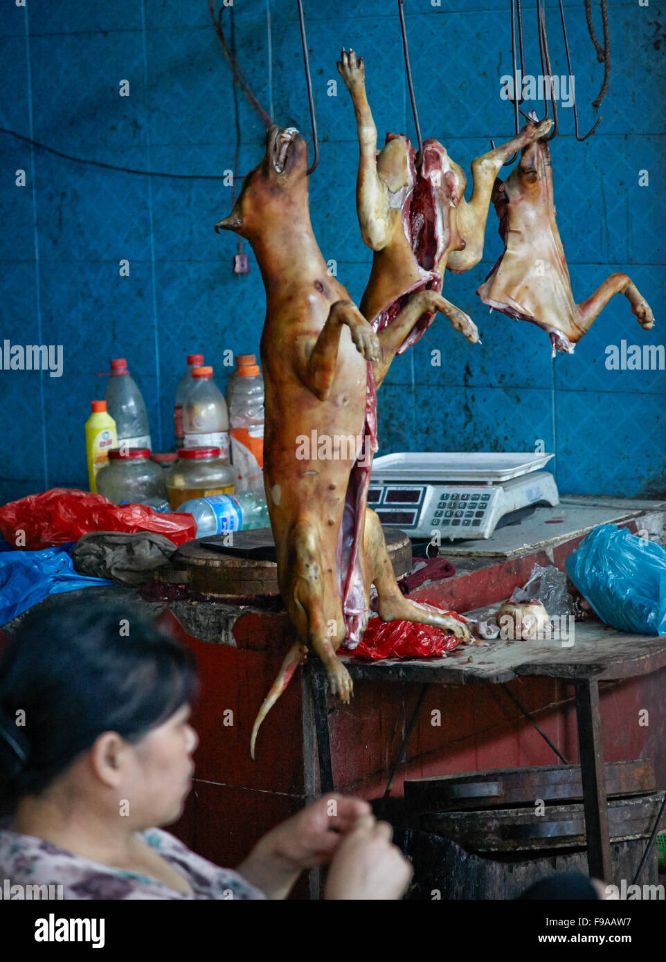 Slaughtered dogs - Market Yangshuo - Stock Image