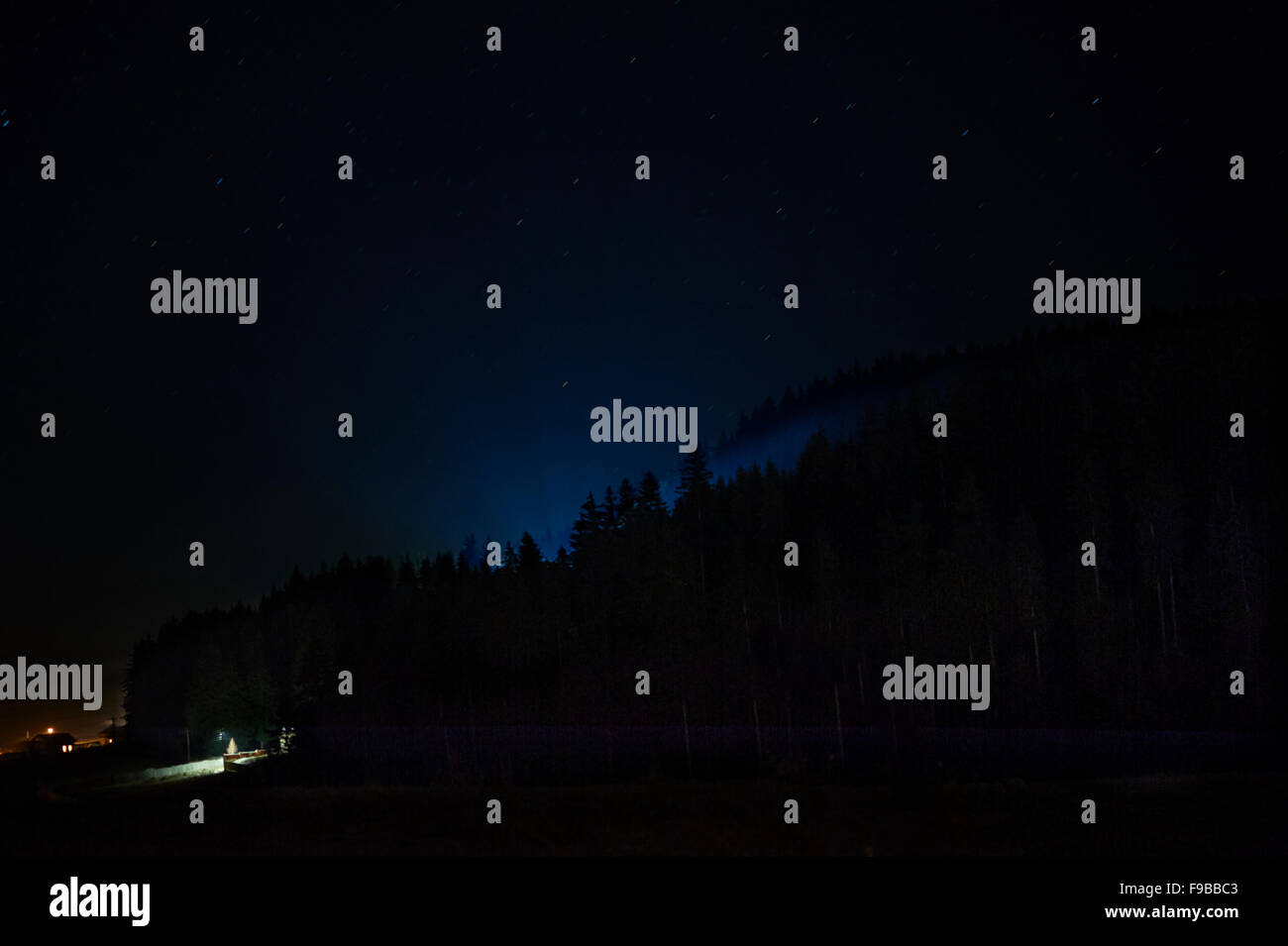 Forest in the night with deep blue sky and stars in Transylvania - Stock Image