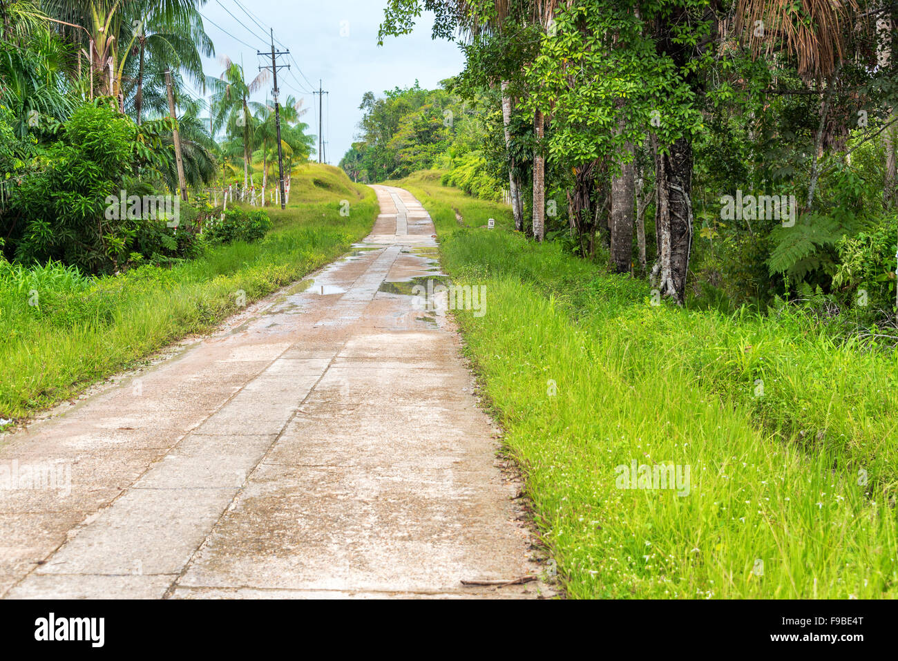 Highway running through the Amazon rain forest near Leticia, Colombia - Stock Image