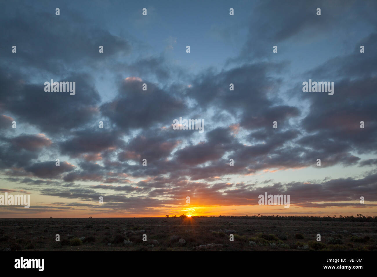 sunset at Wilandra Station, Wilandra National Park, Far West New South Wales, Australia - Stock Image