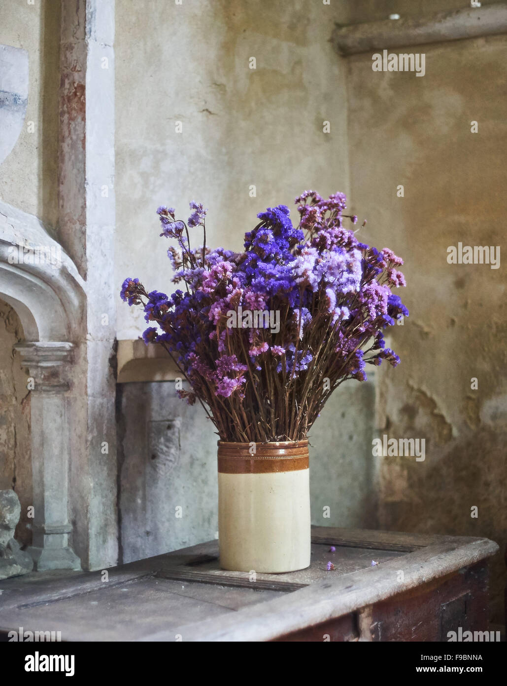 Dried Purple Flowers High Resolution Stock Photography And Images Alamy