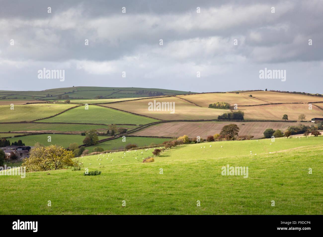 Shropshire countryside, near Clun, Shropshire, England, UK - Stock Image