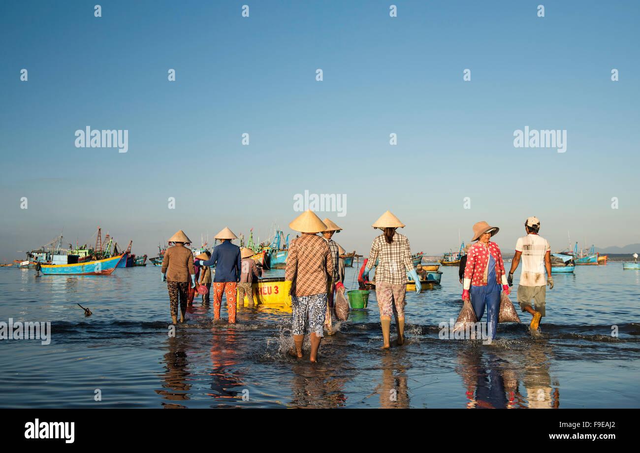Bringing the fishing catch ashore at Mui Ne fishing village, Vietnam Stock Photo
