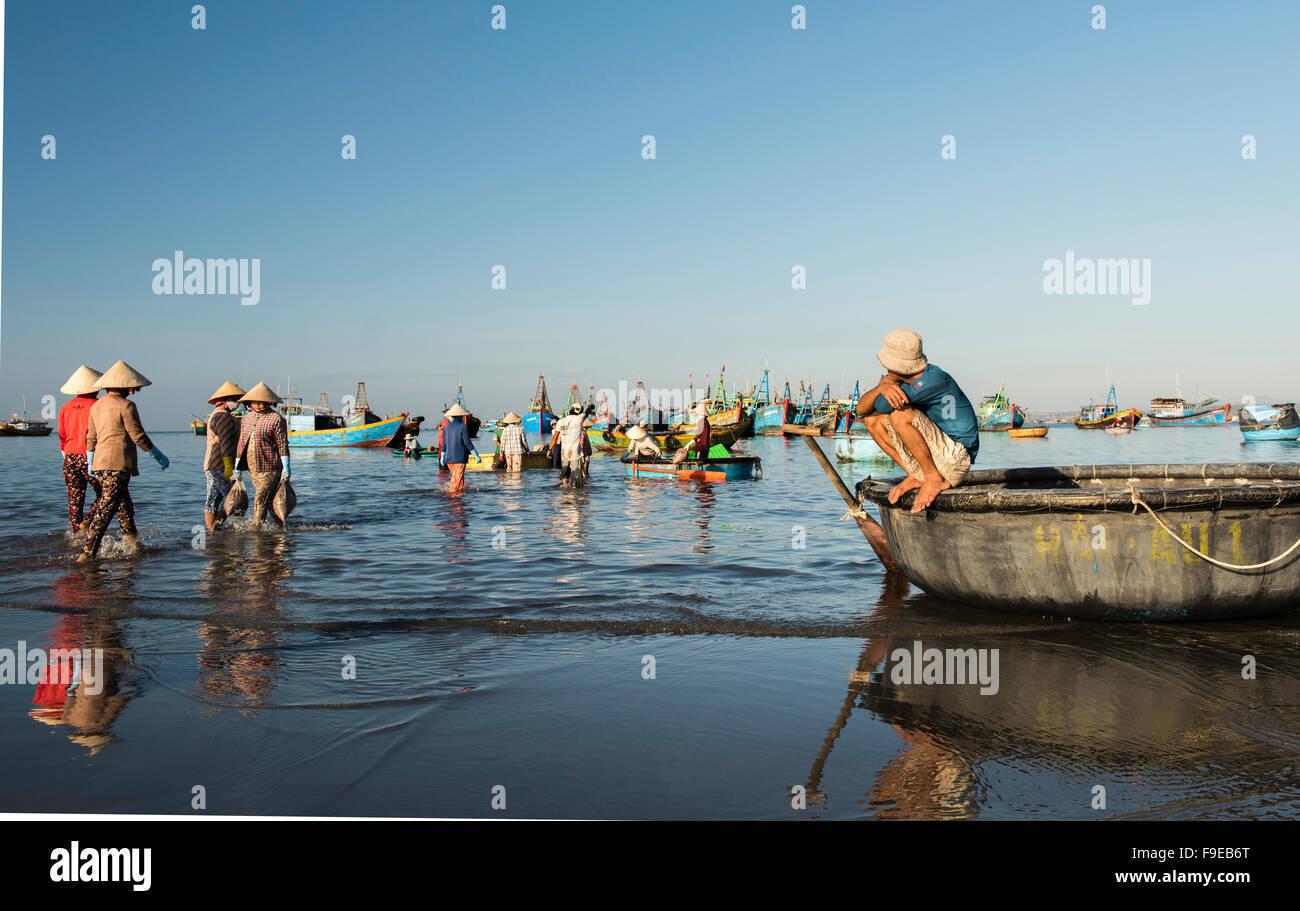 Unloading the early morning fishing catch at Mui Ne fishing village, Vietnam. Stock Photo