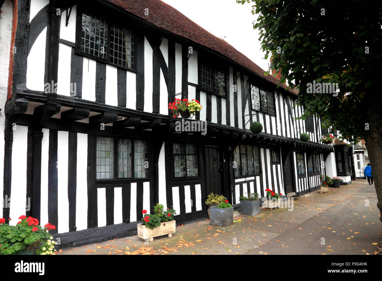 Black and white half-timbered cottages at Henley-in-Arden, Warwickshire. - Stock Image