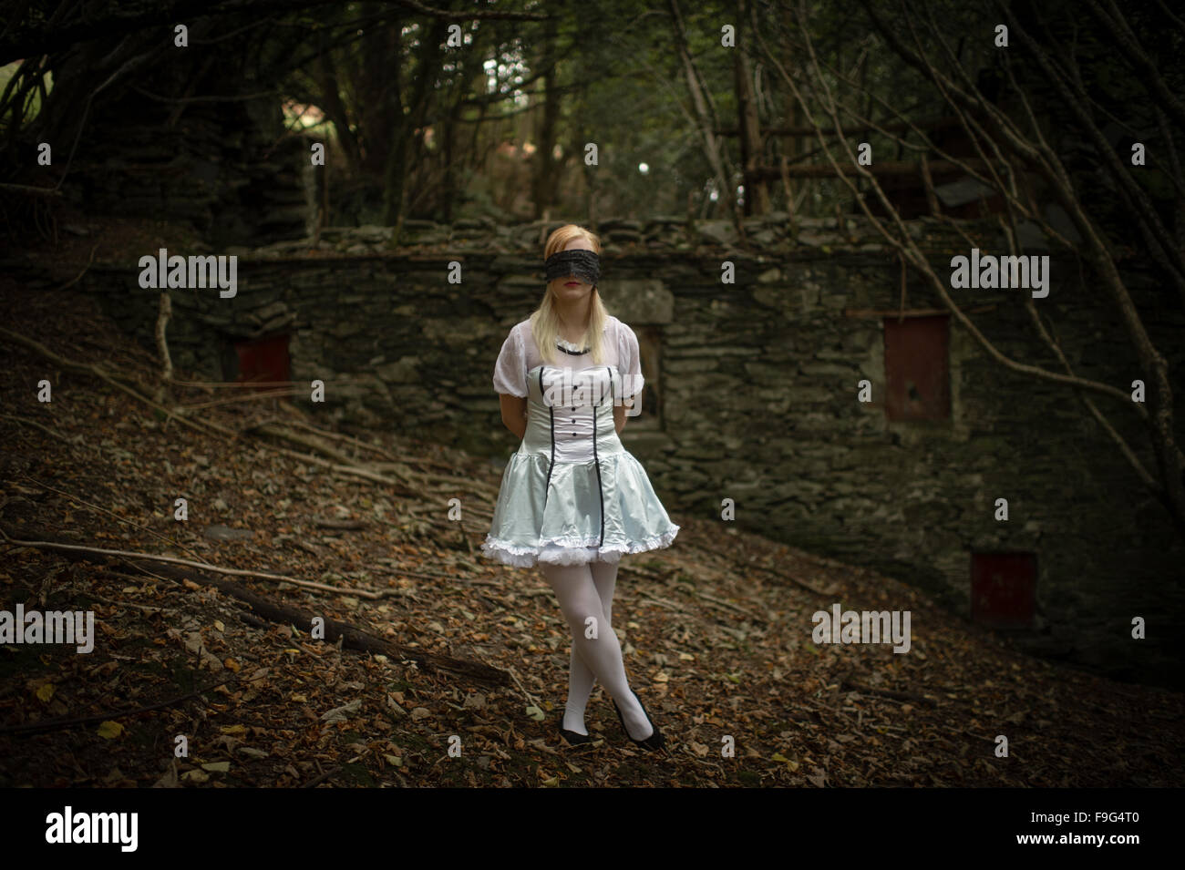 Malice in Wonderland / nightmare: a pretty blonde young woman girl, blindfolded,  wearing an 'Alice' type - Stock Image