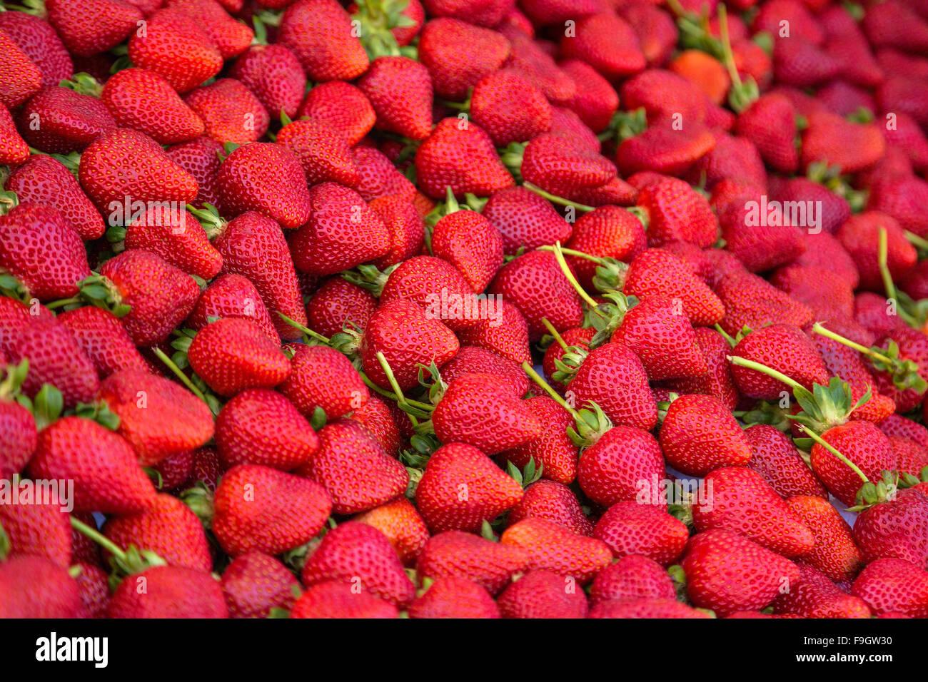 Organic strawberries on display - Stock Image