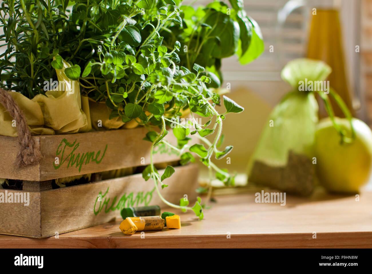 chalk signe name herbs - Stock Image