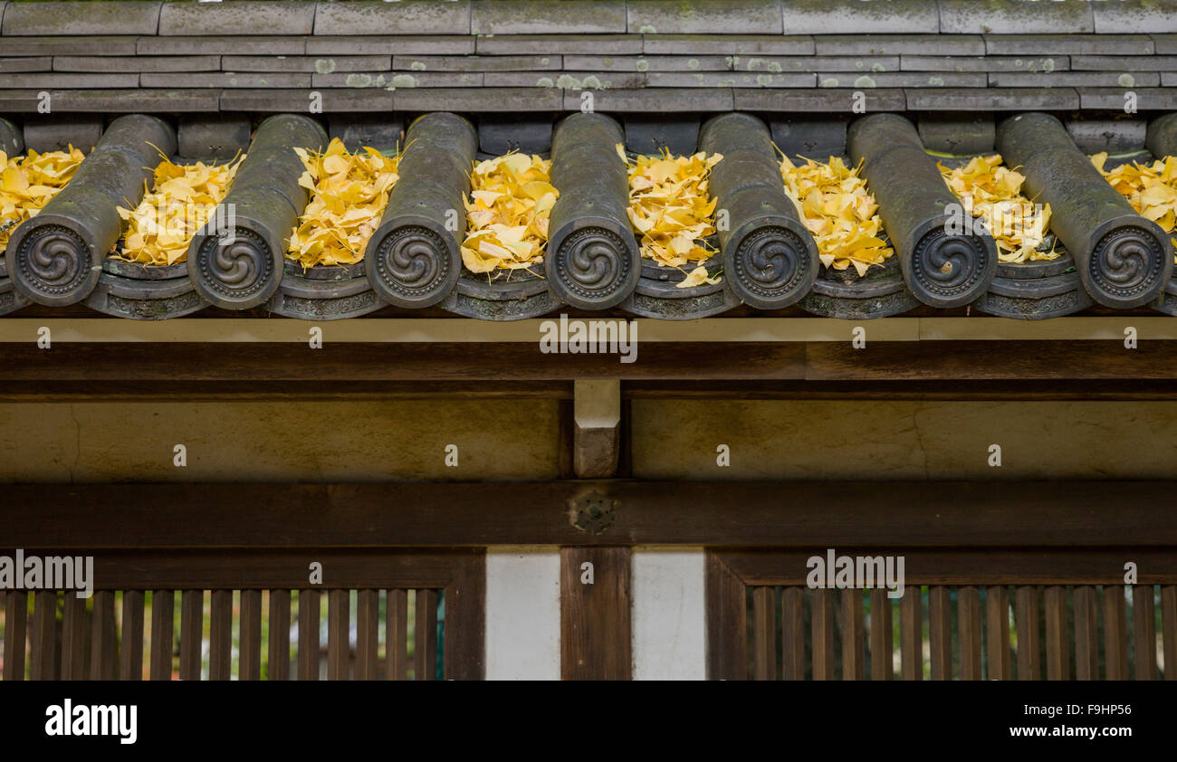 DETAIL OF ROOF WITH FALLEN GINKO LEAVES, TODAI TEMPLE (752)  NARA JAPAN - Stock Image