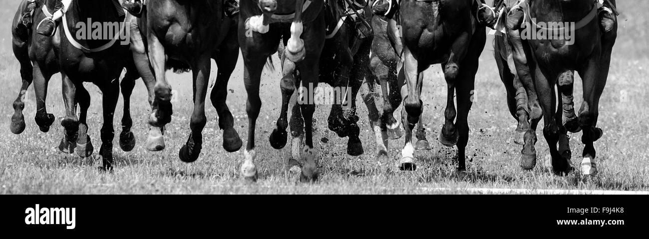 Horse Racing - Stock Image