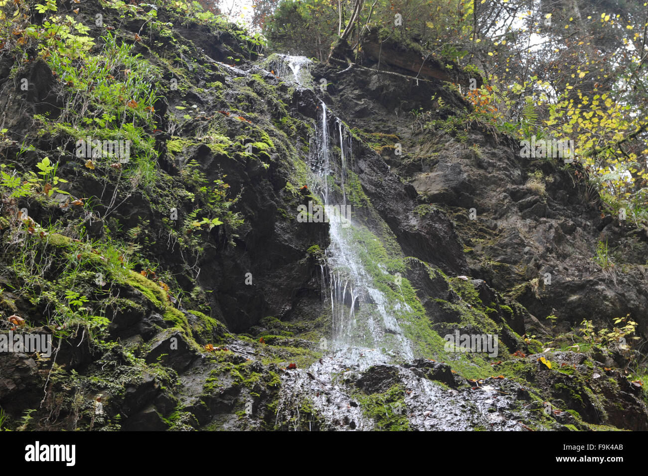 waterfall in lotenbachklamm, southern black forest, baden-württemberg, germany - Stock Image